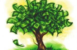 1246963552_1246859681_money_on_trees