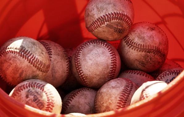 истории про ставки на спорт