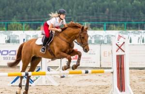 devushka-kon-sport-2159