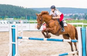 devushka-kon-sport