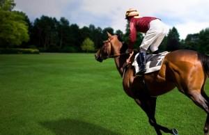 konnnyy-sport-naezdnik-kon