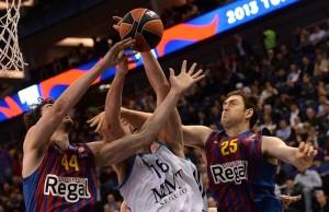 basket_barsa-real600_filippov