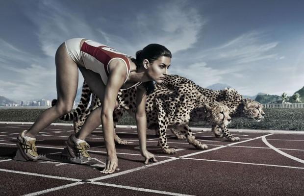 спортивные ставки на спорт через интернет